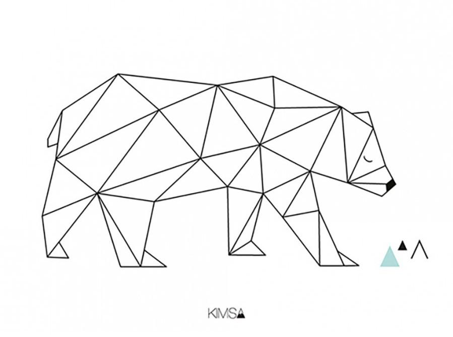 lamina-oso-polar-geometrico